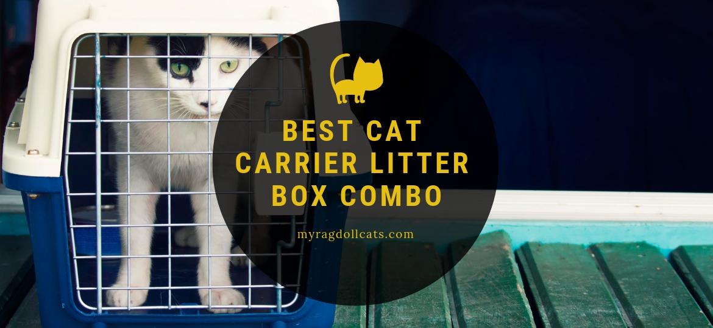 Best Cat Carrier Litter Box Combo